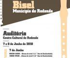 4º Concurso de Flauta de Bisel – Município de Redondo