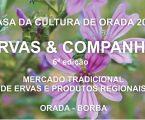 Borba: Ervas & Companhia 2019