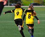 Associação de Futebol vai criar competições de futebol e futsal feminino