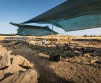 Dia Aberto no complexo arqueológico dos Perdigões com várias atividades para os visitantes