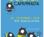 Conselho Local de Ação Social de Évora dinamiza caminhada social