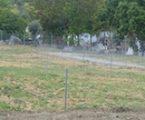 Elvas:  Autarquia abre candidaturas para as hortas comunitárias
