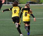 AF Portalegre quer futebol e futsal feminino em todos os concelhos do Alto Alentejo