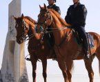 Cerimónia de entrega de 39 novos cavalos à GNR
