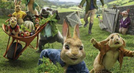 Elvas: Bullet Head – O Último Golpe e Peter Rabbit