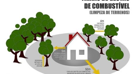 Proprietários têm mais tempo para limpar os terrenos