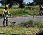 Grândola: Limpeza das faixas de gestão de combustível continua ser prioridade do Executivo Municipal