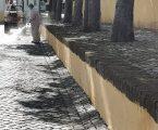 Elvas: Câmara Municipal prossegue com ações de higienização
