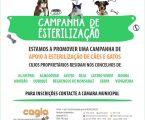 MOURA:  Campanha de esterilização para cães e gatos