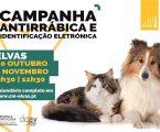 Elvas: Campanha de vacinação antirábica arranca a 20 de outubro