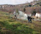 Projeto de requalificação da encosta envolvente às muralhas de Elvas