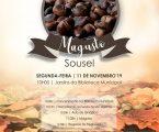 Magusto em Sousel