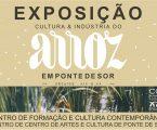 EXPOSIÇÃO CULTURA & INDÚSTRIA DO ARROZ EM PONTE DE SOR – SÉCS. XIX e XX