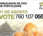 """Os Rebuçados de Ovo de Portalegre são pré-finalistas no concurso """"7 Maravilhas Doces de Portugal"""
