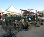Feira do Chocalho em Alcáçovas com Mostra Agropecuária
