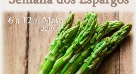 """Festival Gastronómico """"Vila Viçosa à Mesa"""" – Semana dos Espargos 2019"""