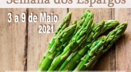 """Festival Gastronómico """"Vila Viçosa à Mesa"""", a Semana dos Espargos"""